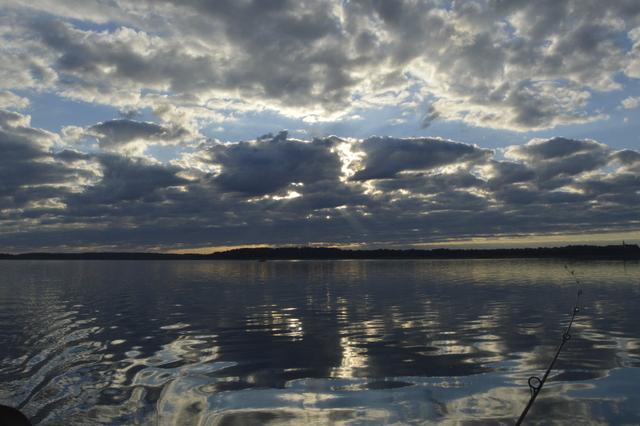 Burtnieks-2013-vasara-117.jpg